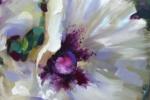 1White Wing Poppies detail sm