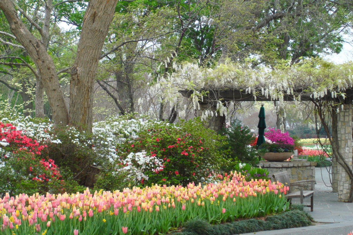 arboretum fav DSC00102