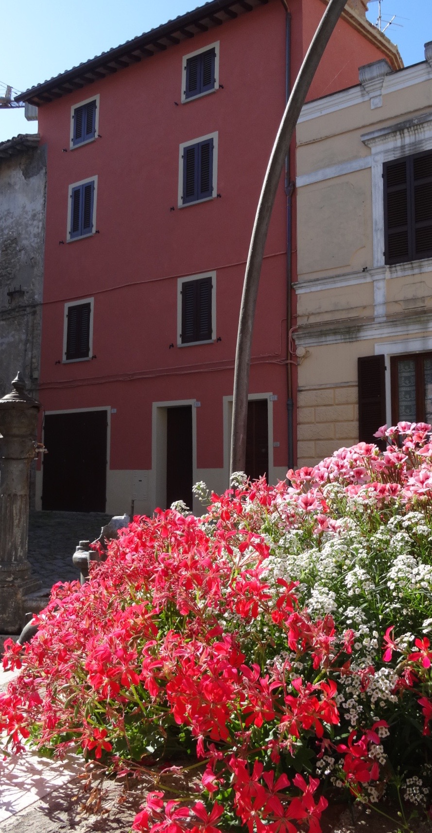 italy flowers pink building