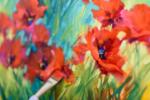 poppies+cathy+neth+NMedina_smCTN_9918