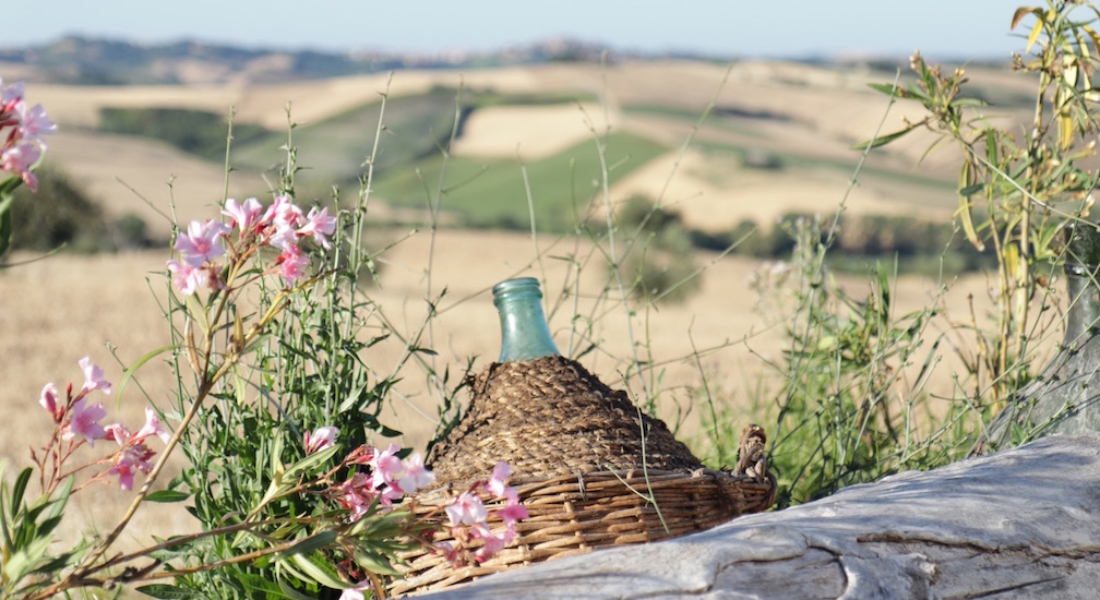 sm bottle terracruda italy IMG_1085