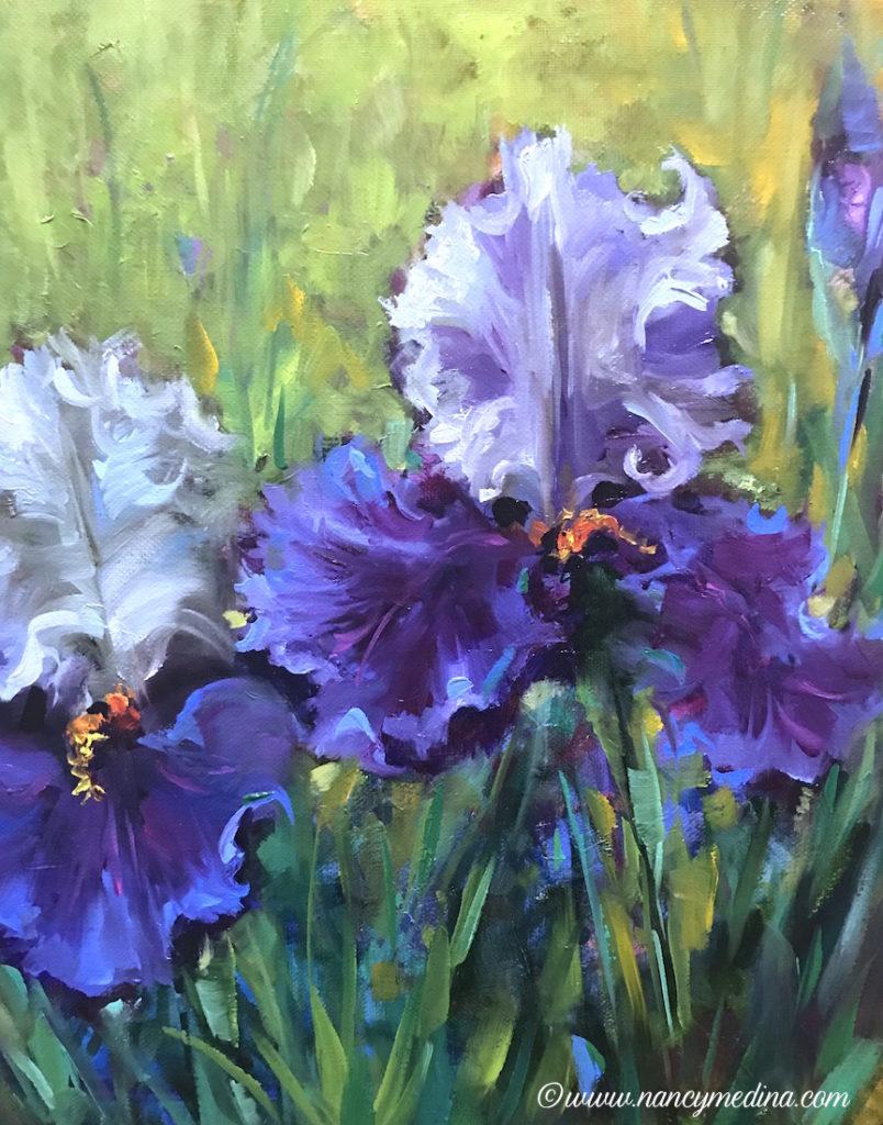 Iris Sympatico