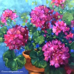 Pink Frosting Geraniums