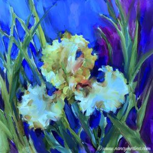Limoncello Iris