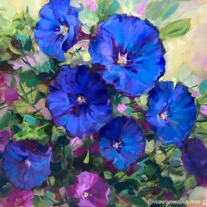 Blue Heaven Morning Glories