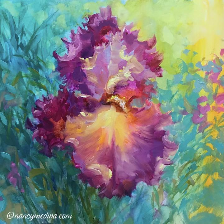 Sunrise Iris