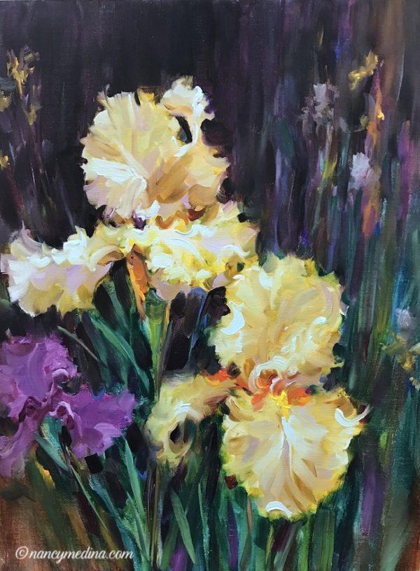 Wing Span Yellow Iris