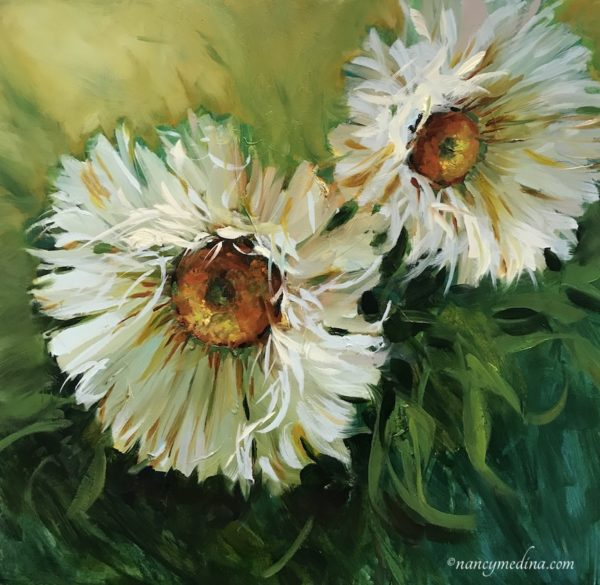 French Daisies