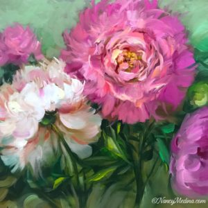 Accidental Dreamer Peonies