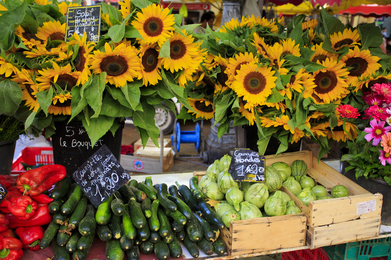 French sunflower market