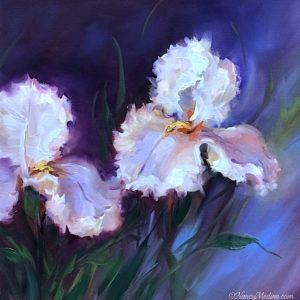 Rockabye Iris