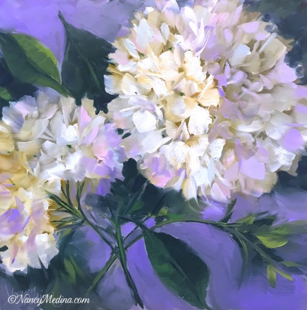 Wishful Thinking White Hydrangeas