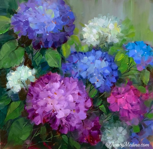 Blue Peepers Hydrangea Garden