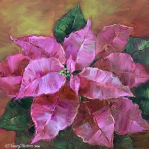 Pink Dust Poinsettias