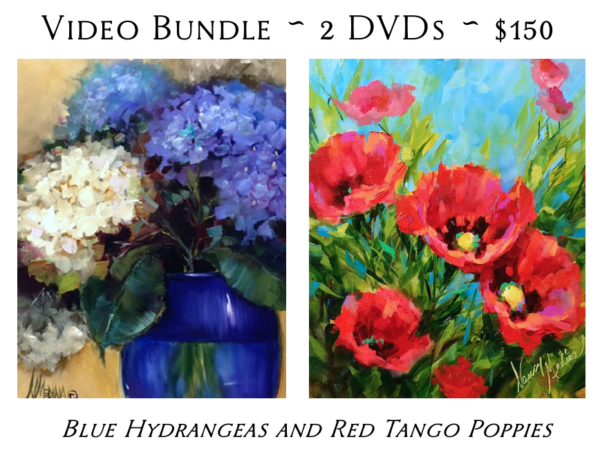 DVD video bundle