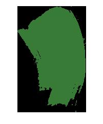 trans-sap-green