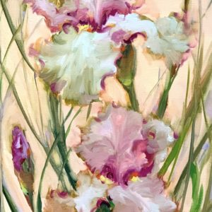 Peachy Pink Iris