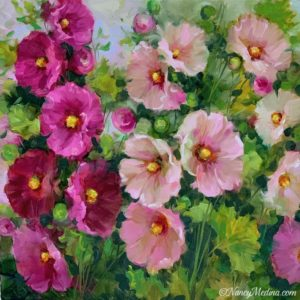 Pink Lady Hollyhocks