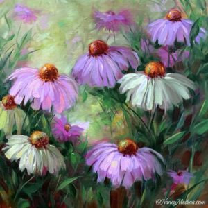 Sunlit Coneflowers