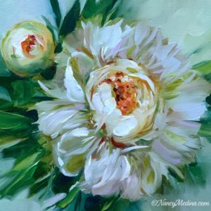 Little Dreamer Peony