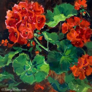 Summer Fire Red Geraniums