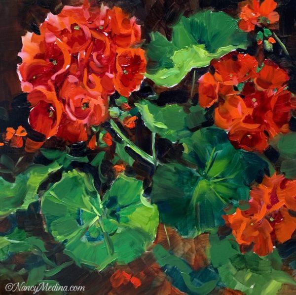 Summer Fire Red Geraniums