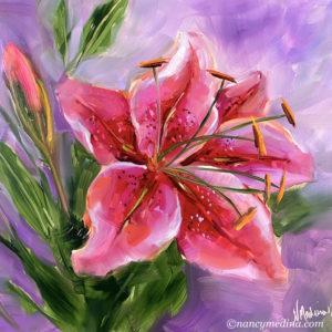 Make a Wish Stargazer Lilies