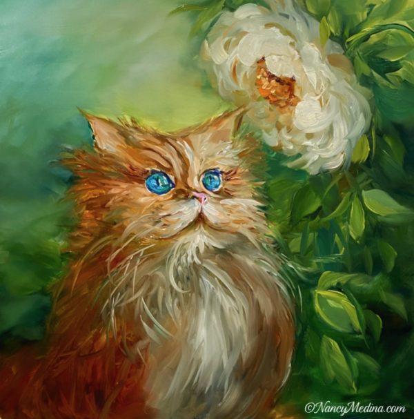 Bright Wonder Kitty