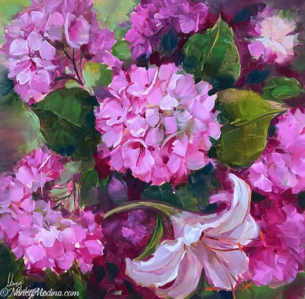 pinkalicious hydrangeas