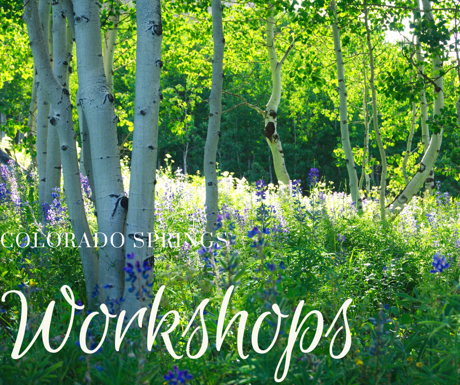 banner colorado springs workshops