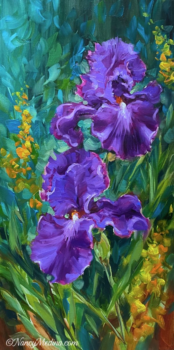 Sun Seeker Purple Iris