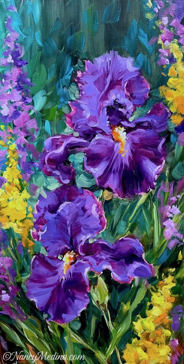 Sun Seeker Purple Iris Garden 24X12