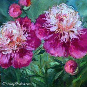 Pink Jewel Peonies 16X16