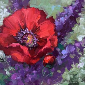 Upward Glances Poppy 12X12