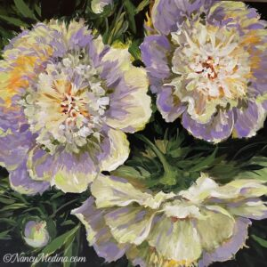 Morning Light White Peonies 36X36