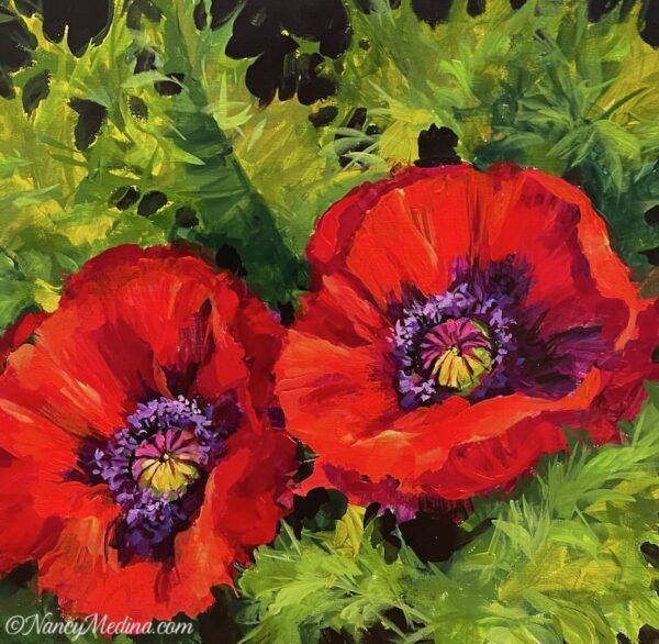 Warm Light Red Poppies 20X20
