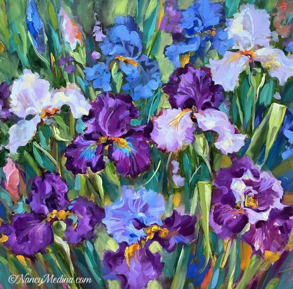 Surprised by Joy Iris Garden 24X24