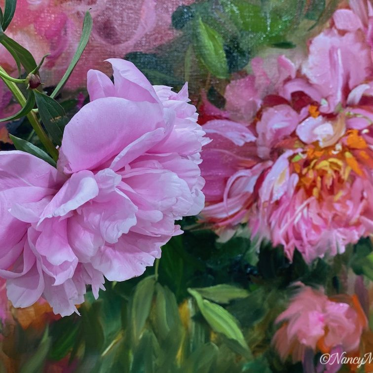 detail new spring peonies 2
